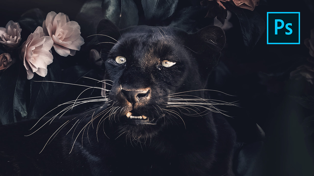 Black Panther – Photoshop Tutorial Digital Art