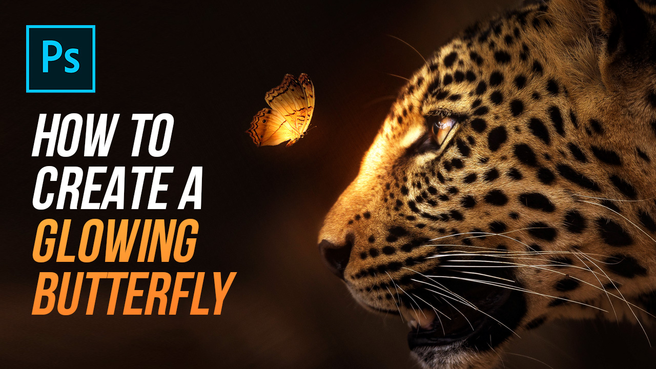 How To Create A Glowing Butterfly – Photoshop Tutorial