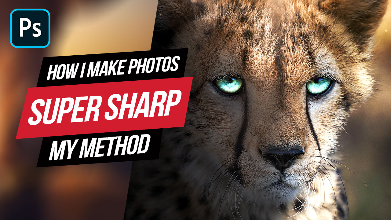 How to Make Your Photos look Super Sharp in Photoshop