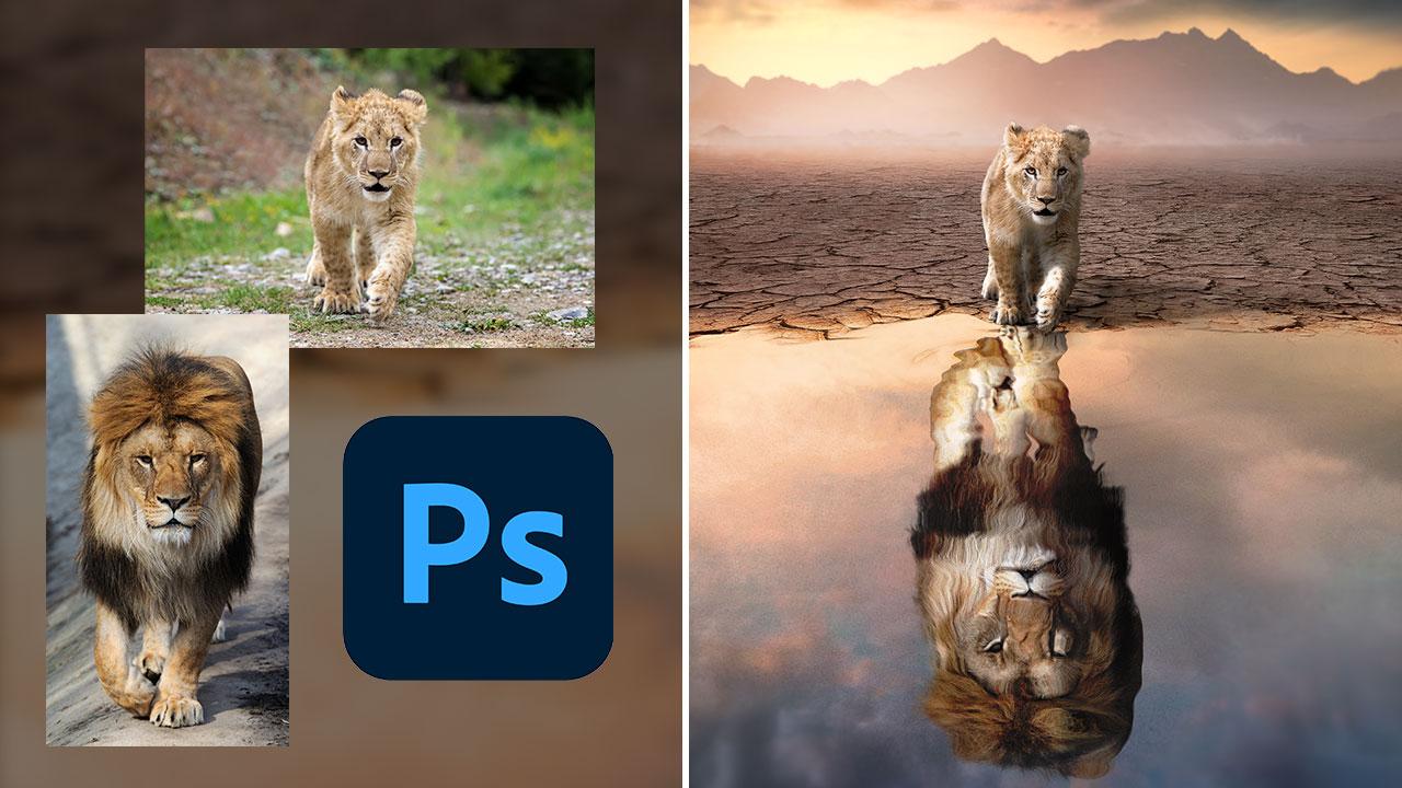 Photoshop Manipulation – The Reflection
